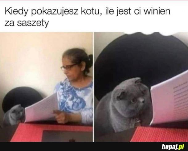 Saszety