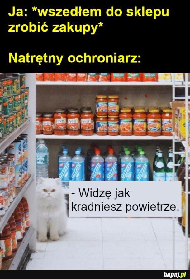 Zakupy