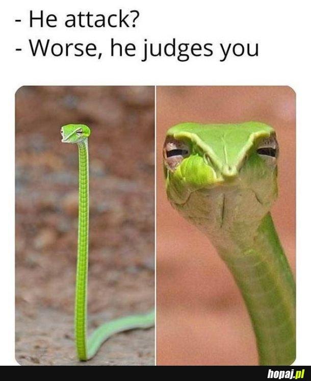 Niebezpieczny gatunek