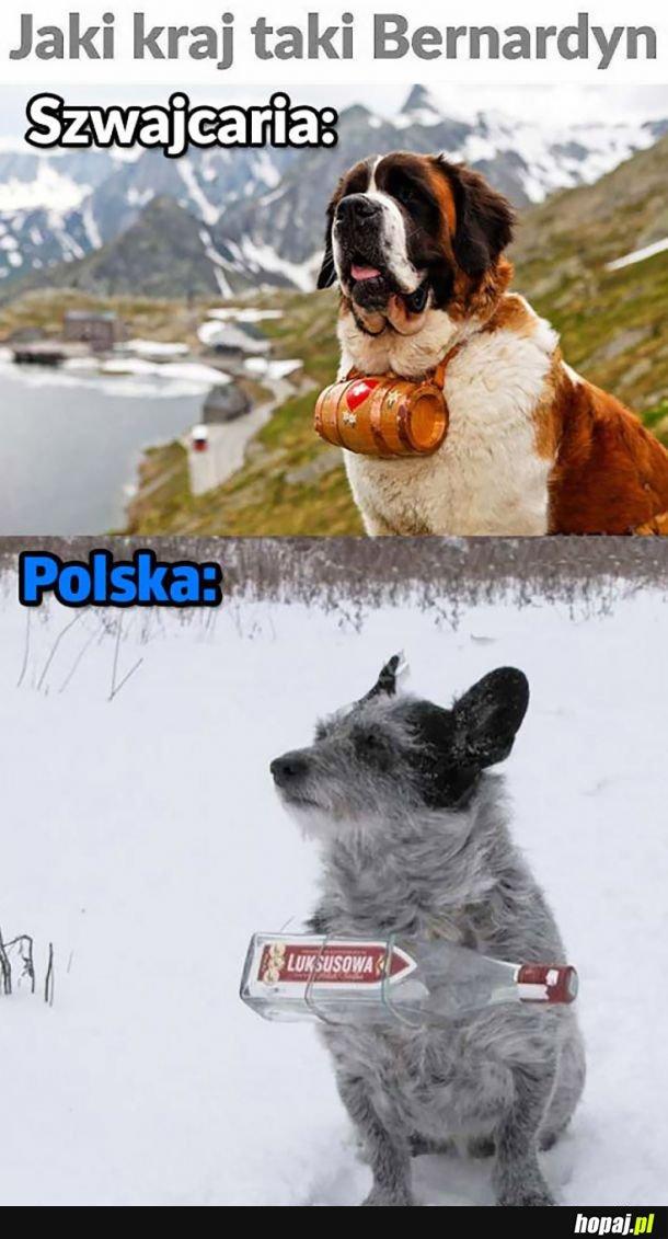 Polski pieseł