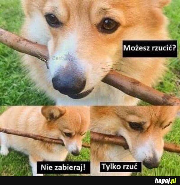 Patyczek