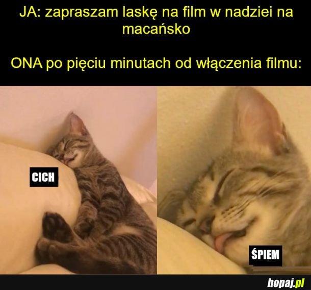 Oglądamy film