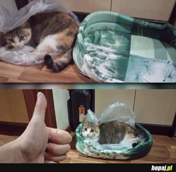 Sposób na kota