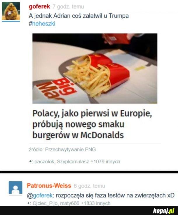 Polacy pierwsi