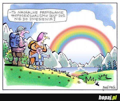 Promowanie homoseksualizmu ;)