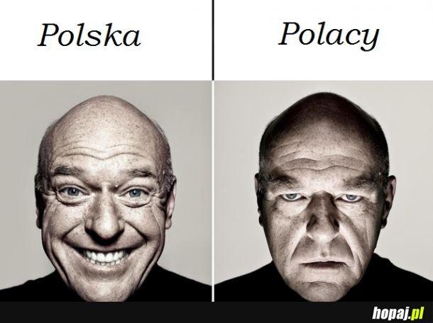 Polak Polakowi Polakiem