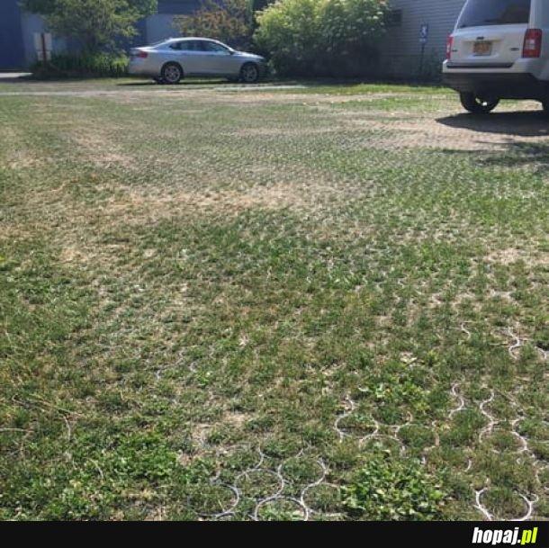 Parking trawnikowy - najlepsza opcja na betonozę.