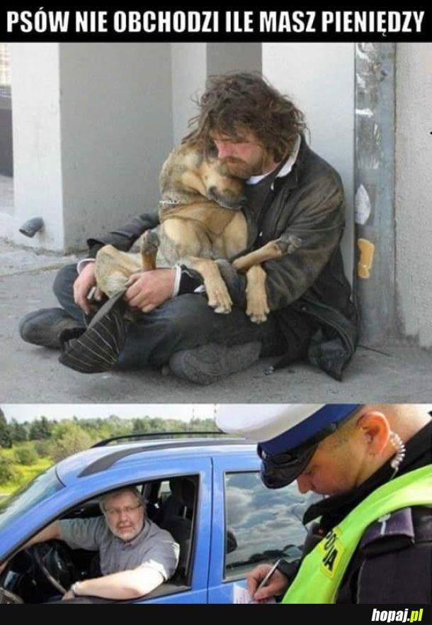 Psa nie obchodzi