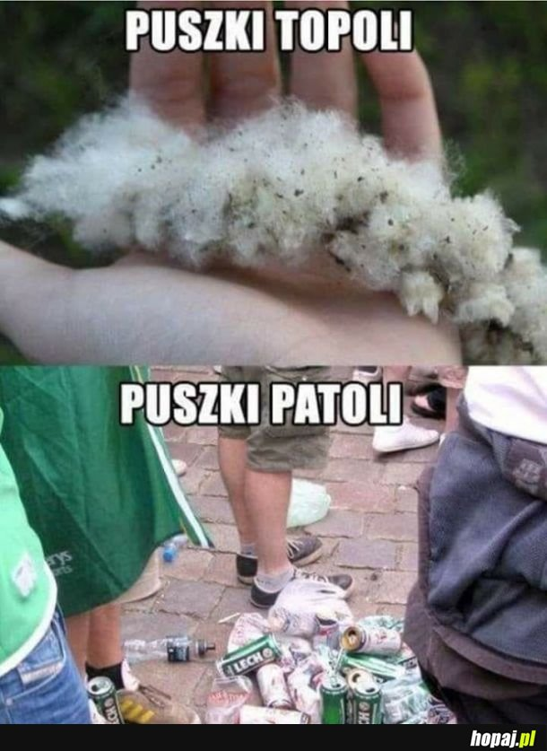 Puszki