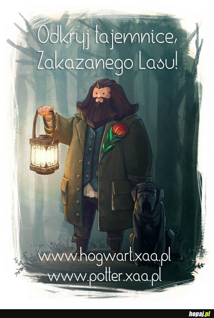 Zapraszam do Hogwartu im Sióstr Carft