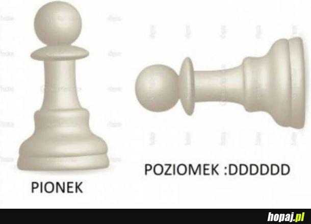 POZIOMEK XDDD