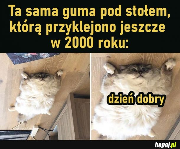 Guma pod stołem z 2000 roku