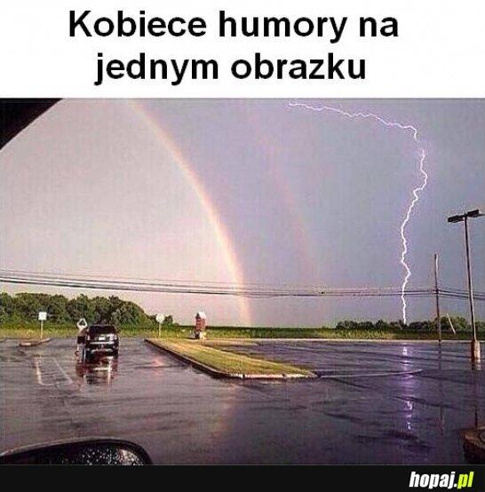 Kobiece humory na jednym obrazku