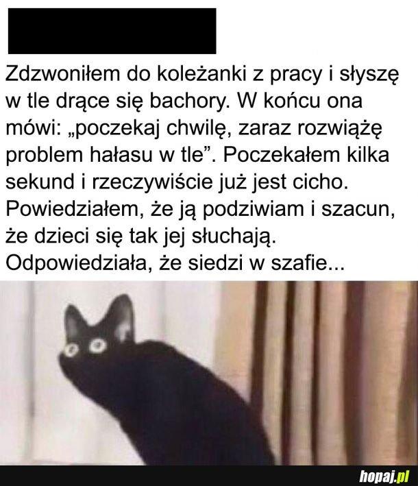 Szafa