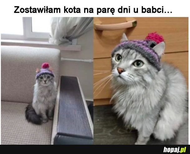 Babcia uszyła czapeczkę
